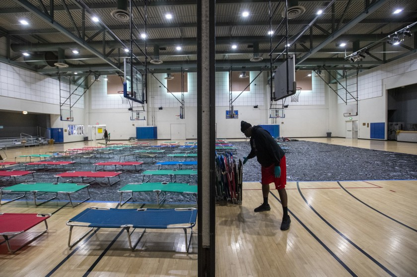 Cots are set up 6 feet apart at Westwood Recreation Center in March 2020, to shelter the homeless. (Brian van der Brug / Los Angeles Times)