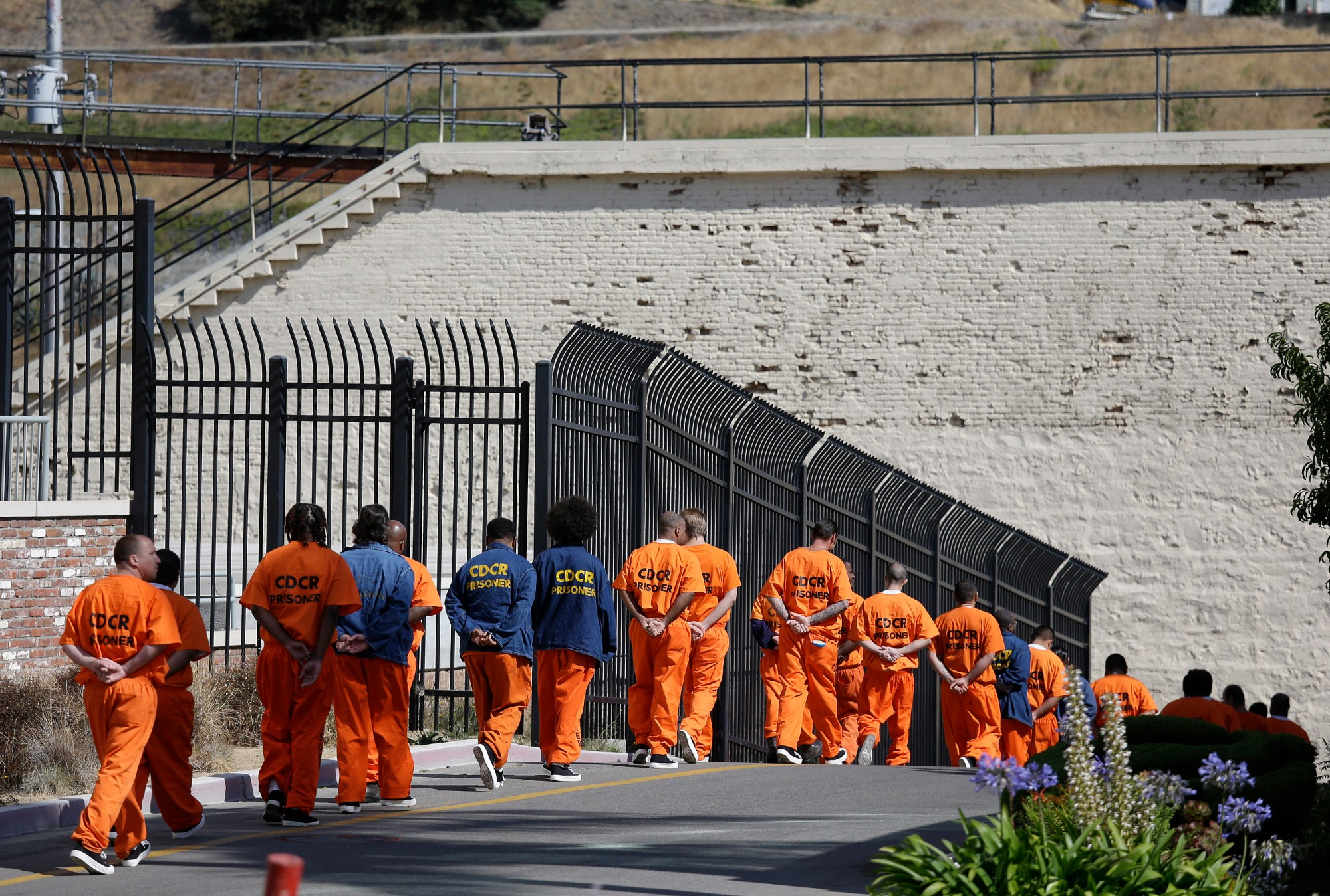 In this Aug. 16, 2016, file photo, a row of general population inmates walk in a line at San Quentin State Prison in San Quentin, Calif. California state prison officials say in a July 27, 2020, court filing that as many as 17,600 inmates are eligible for release due to the coronavirus, 70% more than previously estimated and a total that victims and police say includes dangerous criminals who should stay locked up. (AP Photo/Eric Risberg, File)