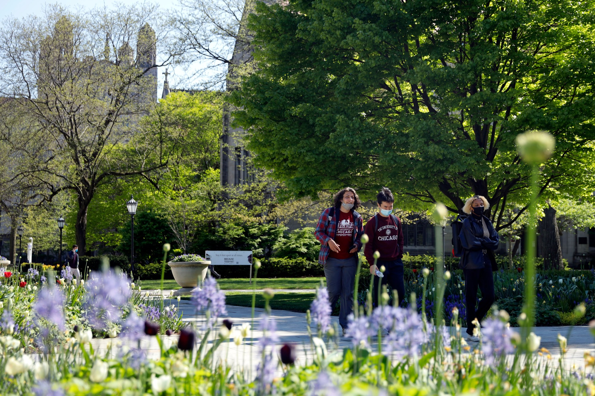 Students wearing masks make their way through the University of Chicago campus, Thursday, May 6, 2021, in Chicago. (AP Photo/Shafkat Anowar)