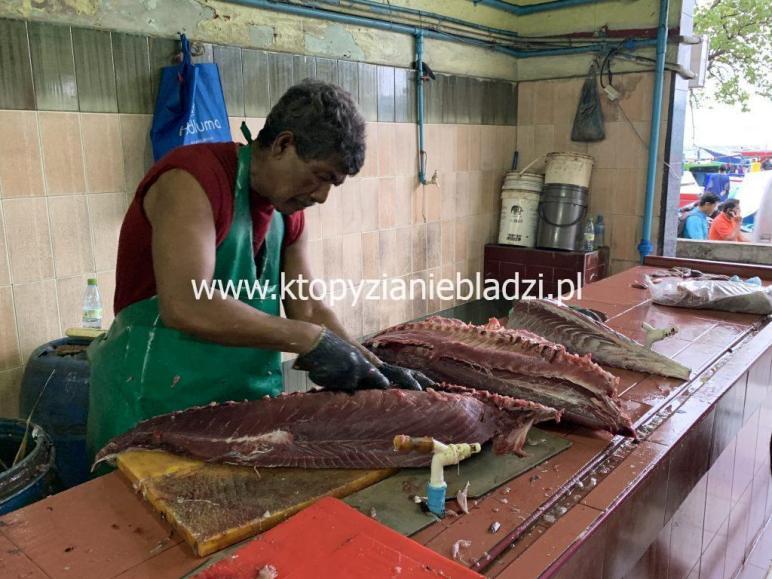 Malediwy, Stolica, Malé, targ rybny. Tutejsze tuńczyki ważą nawet 200 kilogramów!