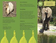 Tri-fold brochure for the Memphis Zoo- Outside