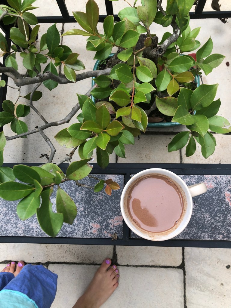 hot chocolate cacao medicinal mushrooms