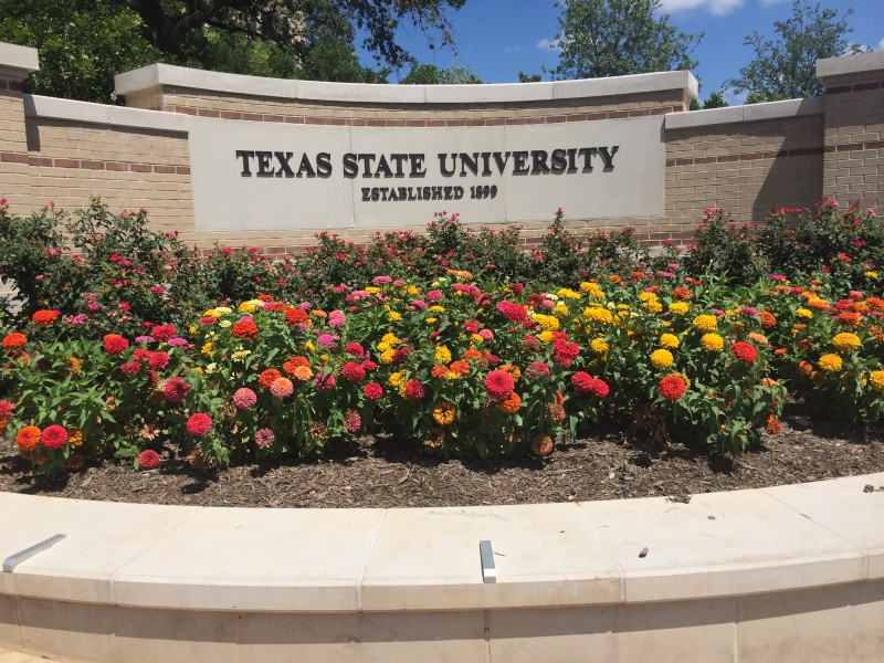 Flowers by Texas State University wall. Photo by Dylan Lochridge-Fletcher