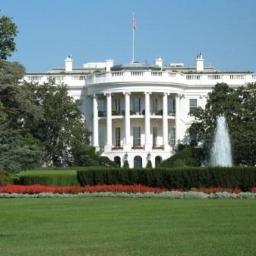 thw white house