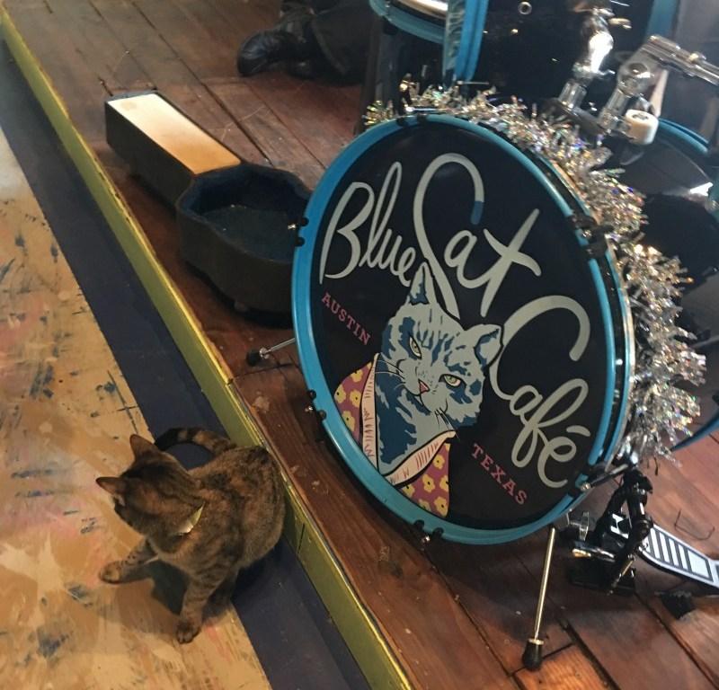 Blue Cat Cafe