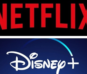 A divided screen showing both the Netflix and Disney Plus logos