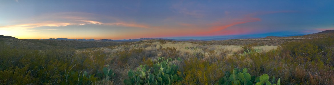 view of the sunset over the mountains with grasses and cacti in the forefront