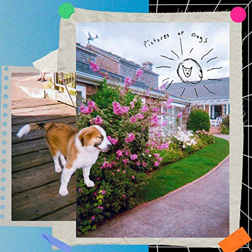 Album cover with collage photos combines with a dog at the forefront.