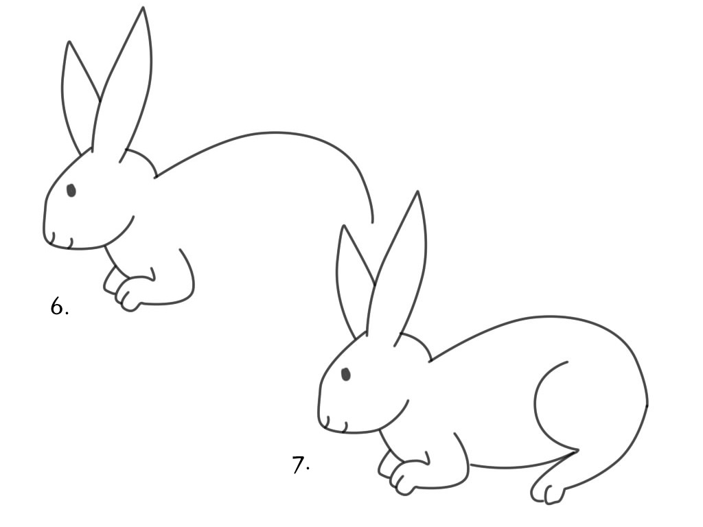 Menggambar Kelinci