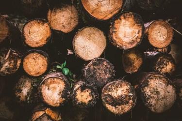 どうなる材木不足!?原因とこれからどうなるのか?を考えてみた。
