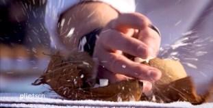 RID-rekord-zerschlagene-Kokosnusspaare3