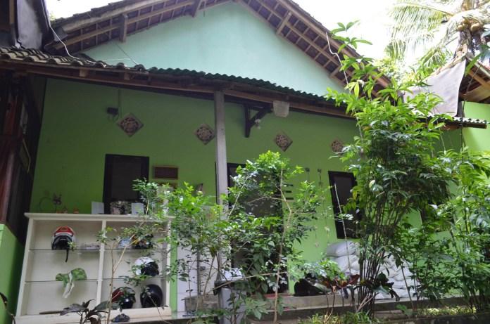 wp image 1685660318jpeg - Villa Kitty: Villanya Kucing-Kucing Jalanan di Ubud, Bali