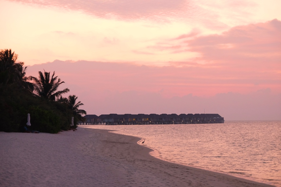 kucuk-martha-maldives-maldivler-velassaru-maldives-1