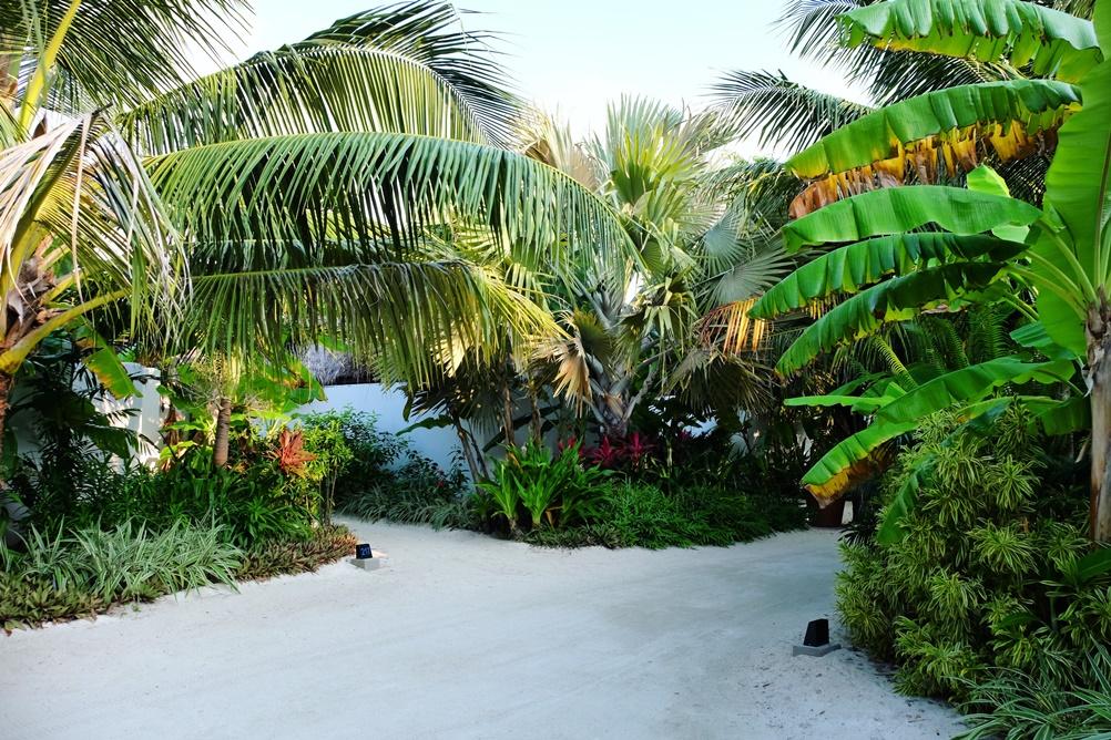 kucuk-martha-maldives-maldivler-velassaru-maldives-37