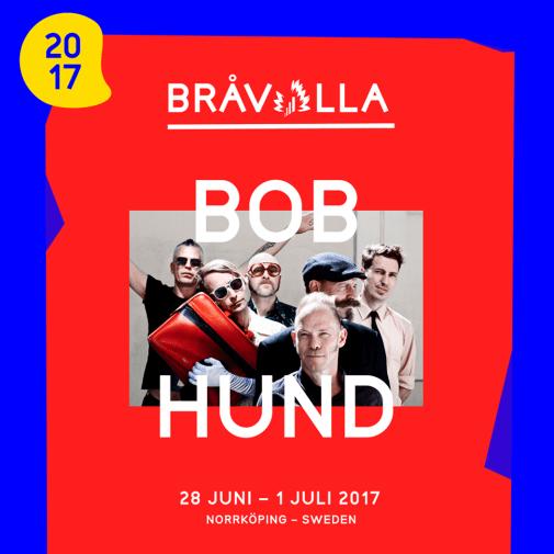 Bråvalla Festival Norrköping Bobhund