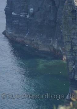 Cliffs of Moher (10)