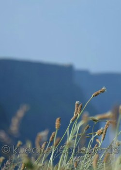 Cliffs of Moher (14)