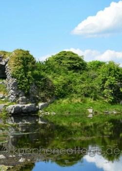 Dunguaire Castle Nähe Kinvarra (2)