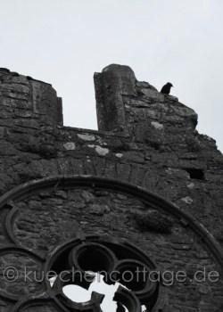 Rock of Cashel (10)