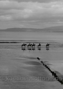 Rossbeigh Beach  (1)