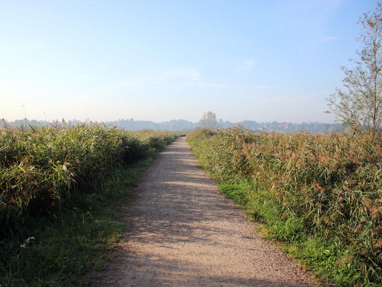Brenner Moor Weg