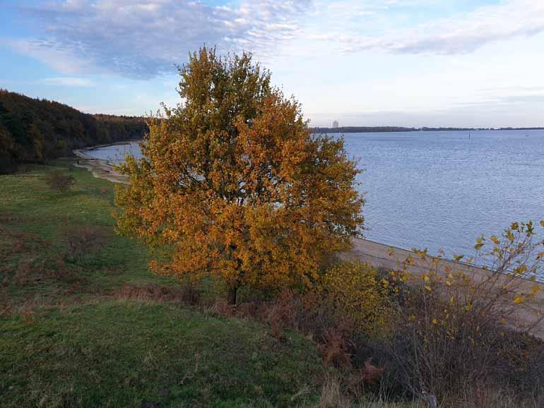 Dummersdorfer Ufer