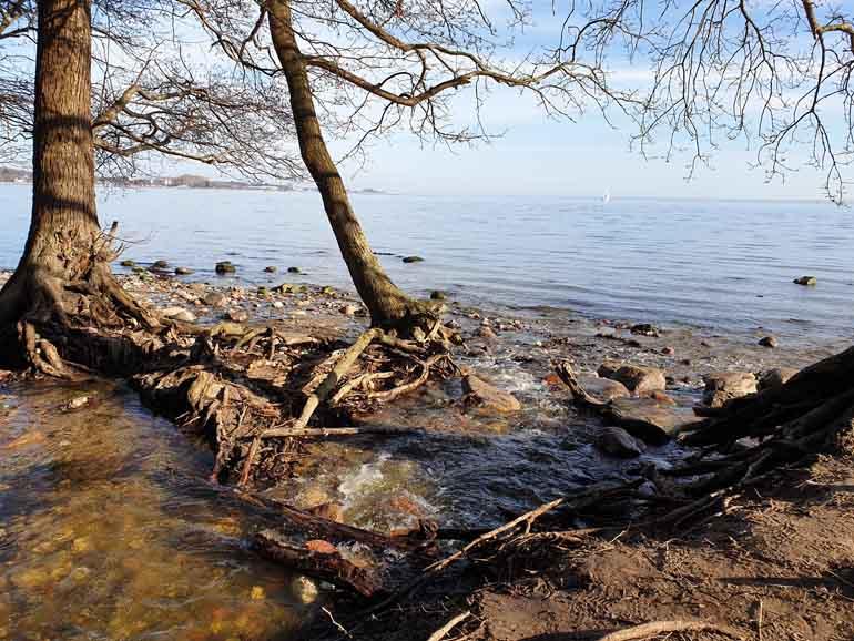 Steilküste Sierksdorf