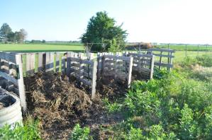 The four-bin compost system at the farm. Feel free to drop of scraps whenever you're nearby!