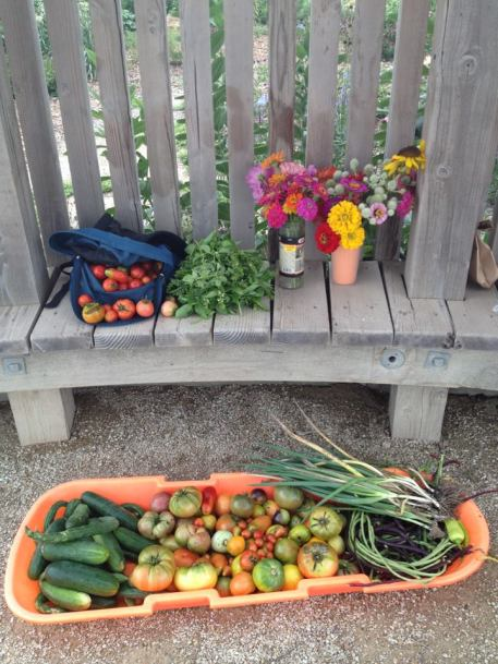 Flowers and veggies harvested from the Community Plot, summer 2013.