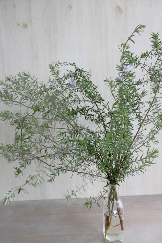 ウエストリンギア生花