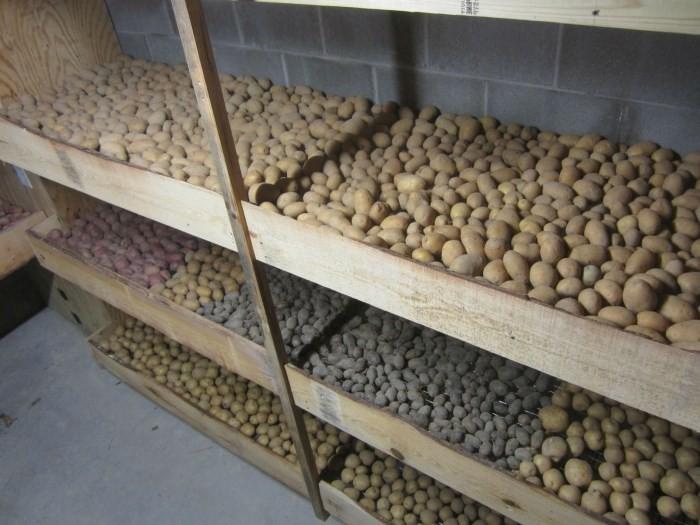 в чем хранить картошку