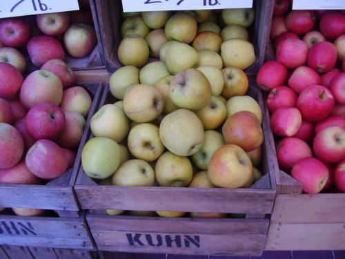 apples 28