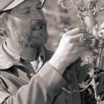 Dave crop