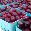 Kuhn-Orchards-Produce0629_091103