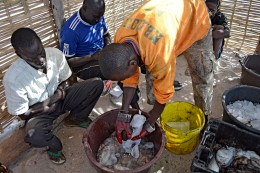 Fishing employs 600,000 or one million Senegalese people when all segments of the industry are taken into account.