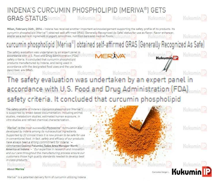 chung nhan gras Meriva, bằng sáng chế của curcumin phytosome