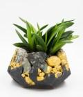 Pot de fleurs en béton