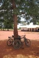 Zambia bikes