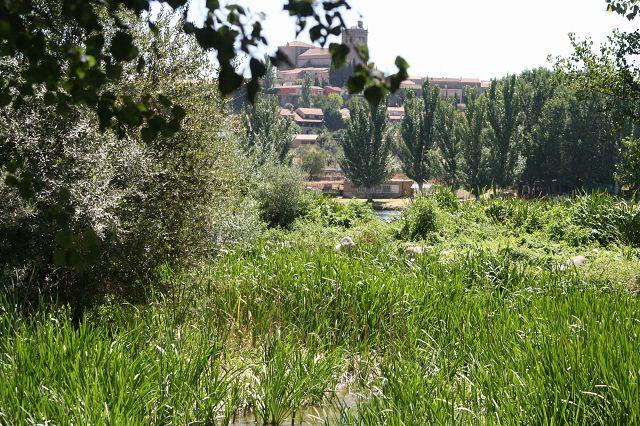 Ledesma am Rio Tormes – kurz vor Salamanca