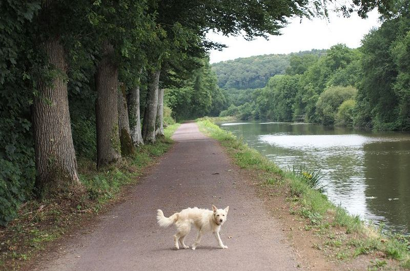 St. Congard am Canal Nantes a Brest