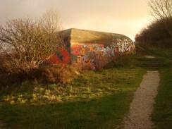 Eines der schönsten Kunstwerke, das ich je gesehen habe - Graffitis schmücken die Mauern deutscher Kriegshinterlassenschaften in Le Havre.