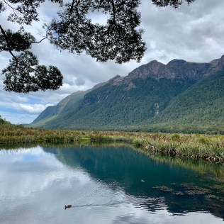 The so-called Mirror Lakes on the way to Milford Sound