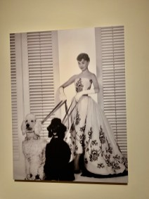 Audrey Hepburn liebte sie...