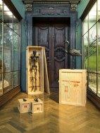 Ausstellungsansicht im Nathurhistorischen Museum Wien Museum Mark Dion The Tar Museum – Skeleton Cabinet, Lizard and Gecko & Flamingo , 2006 Photo: mumok / Klaus Pichler Courtesy t he artist and Georg Kargl Fine Arts, Vienna