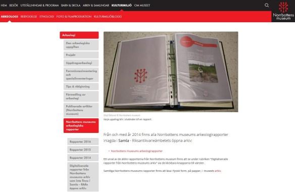 En bild som visar hur en av sidorna på vår hemsida ser ut.