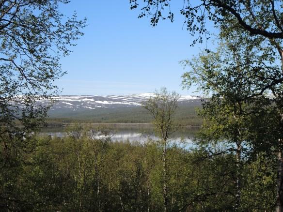 Dagens utsikt från boendet - sjön Vuoggatjålme helt spegelblank!