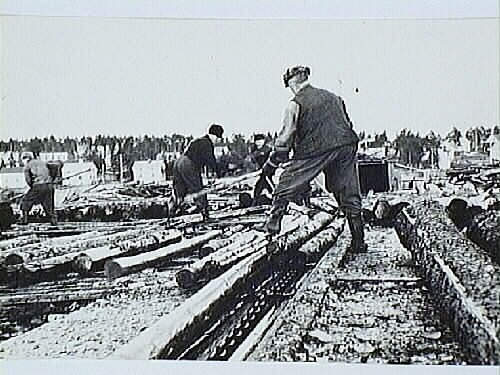 Kk+A+232_Timmeruppdragning flottbroar Vassholmen 1958