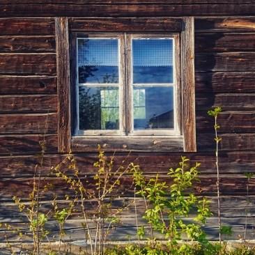 fönsterrenov