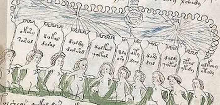 Фрагмент рукописи Войнича.