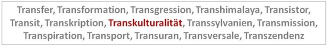 Trans ... kulturalität